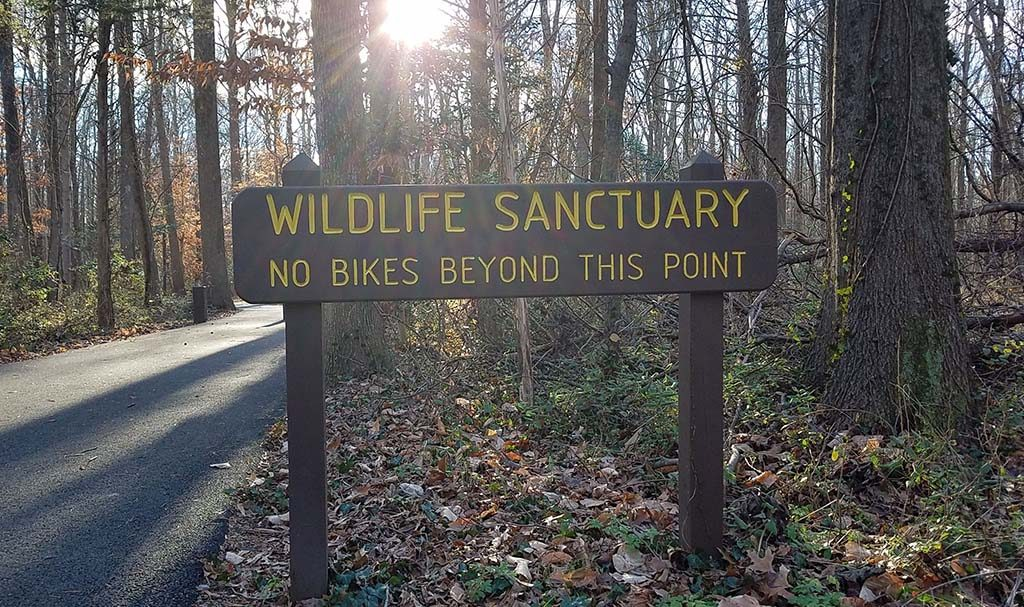 """Sign reading """"Wildlife Sanctuary"""" """"no bike beyond this point"""" near entrance to Huntley Meadows"""