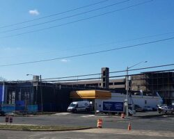 Zips is seen on Sunday after the fire